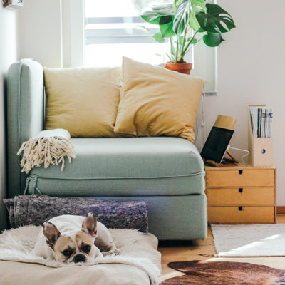 top tips for staying home